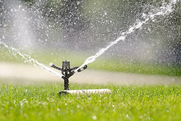 A sprinkler waters the grass on Bascom Hill at University of Wisconsin-Madison during a summer morning on June 25, 2012. This week's forecast calls for increasingly hot, dry weather with temperatures well into the 90s and much-needed rain nowhere in sight. (Photo by Jeff Miller/UW-Madison)