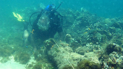 CNN: Explorer Brandon Clifford says he believes these are the remains of Columbus' Santa Maria.