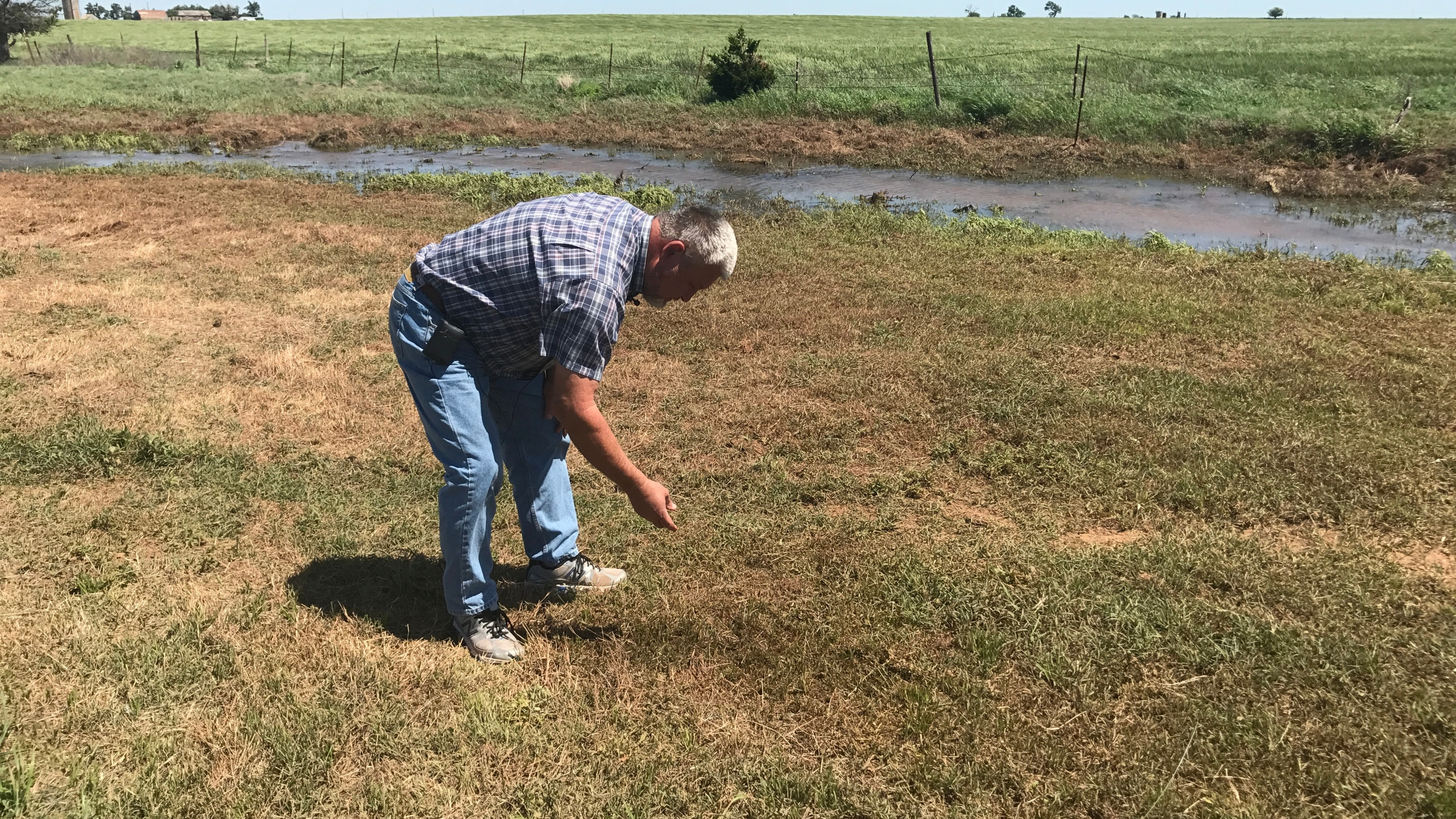 Kingfisher County farmer and rancher Steve Pope checks his land for crude oil after pipeline leak