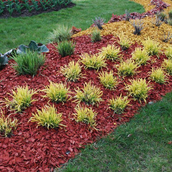 Landscaping Gardening Kfor Com