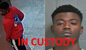 Photo of apprehended suspect
