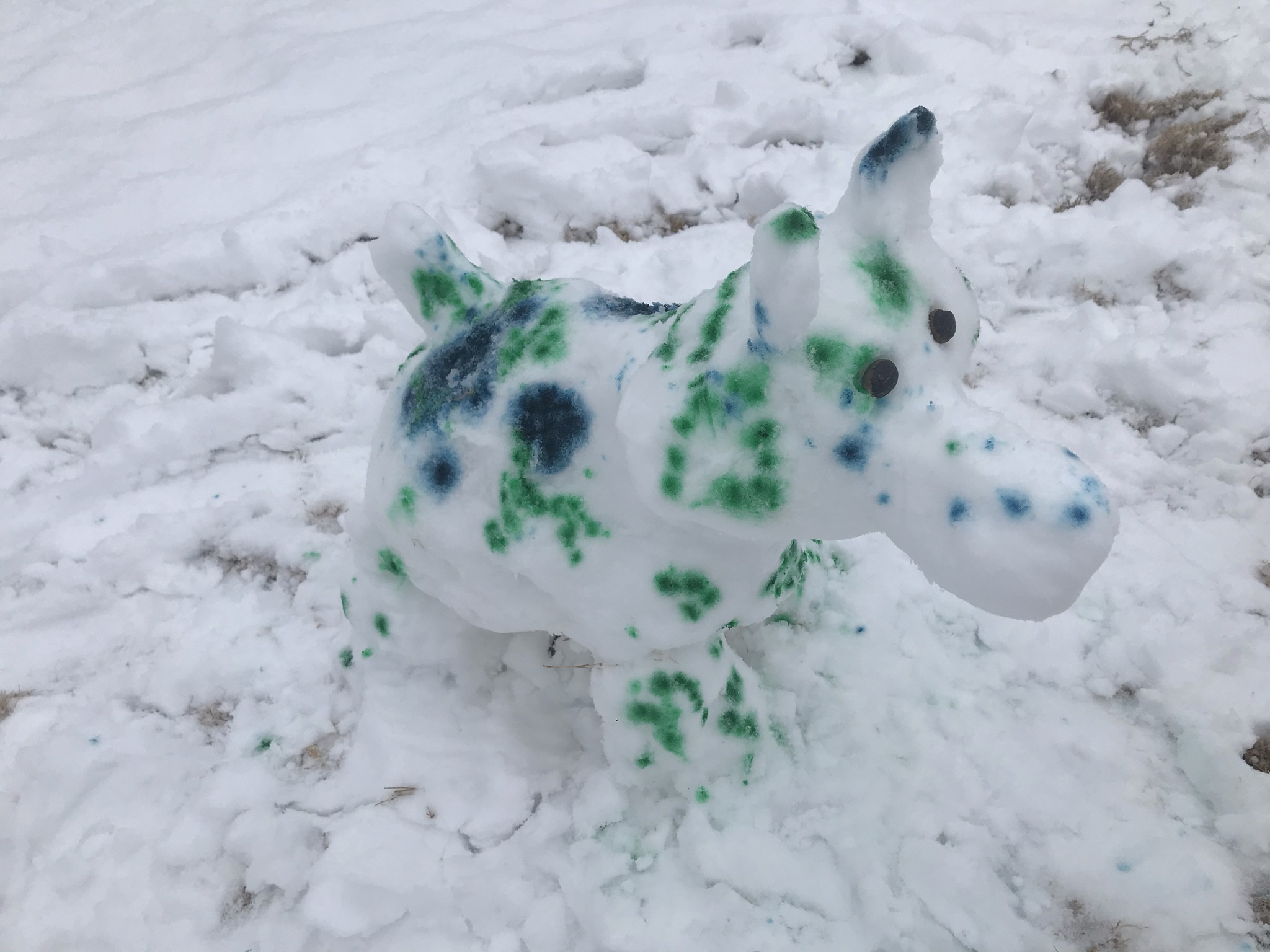 Snow Dog with food coloring spots.