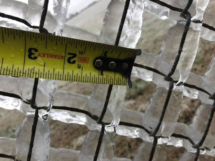 picture of ice on chain link fence