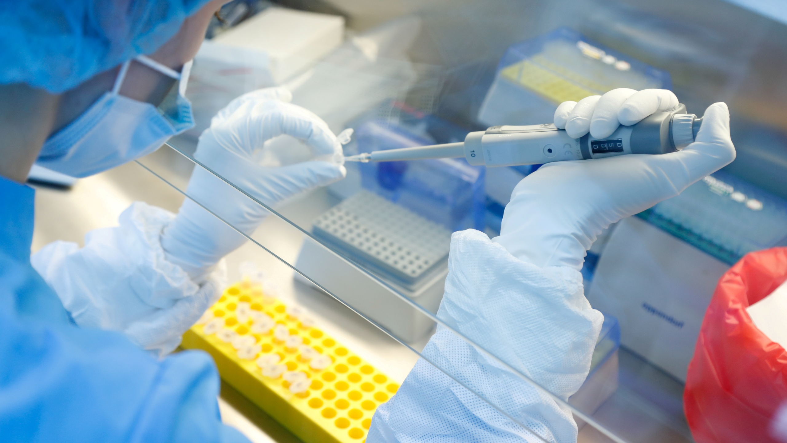 FILE PHOTO: A scientist prepares samples during the research and development of a vaccine against the coronavirus disease (COVID-19) at a laboratory of BIOCAD biotechnology company in Saint Petersburg, Russia June 11, 2020. REUTERS/Anton Vaganov/File Photo