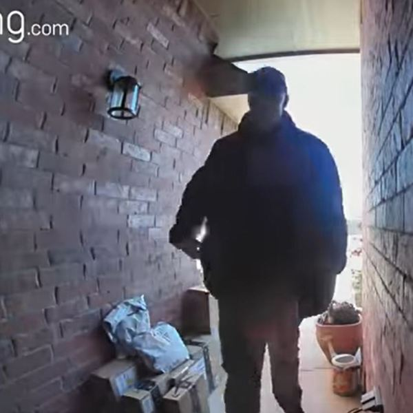 Package thief in Moore