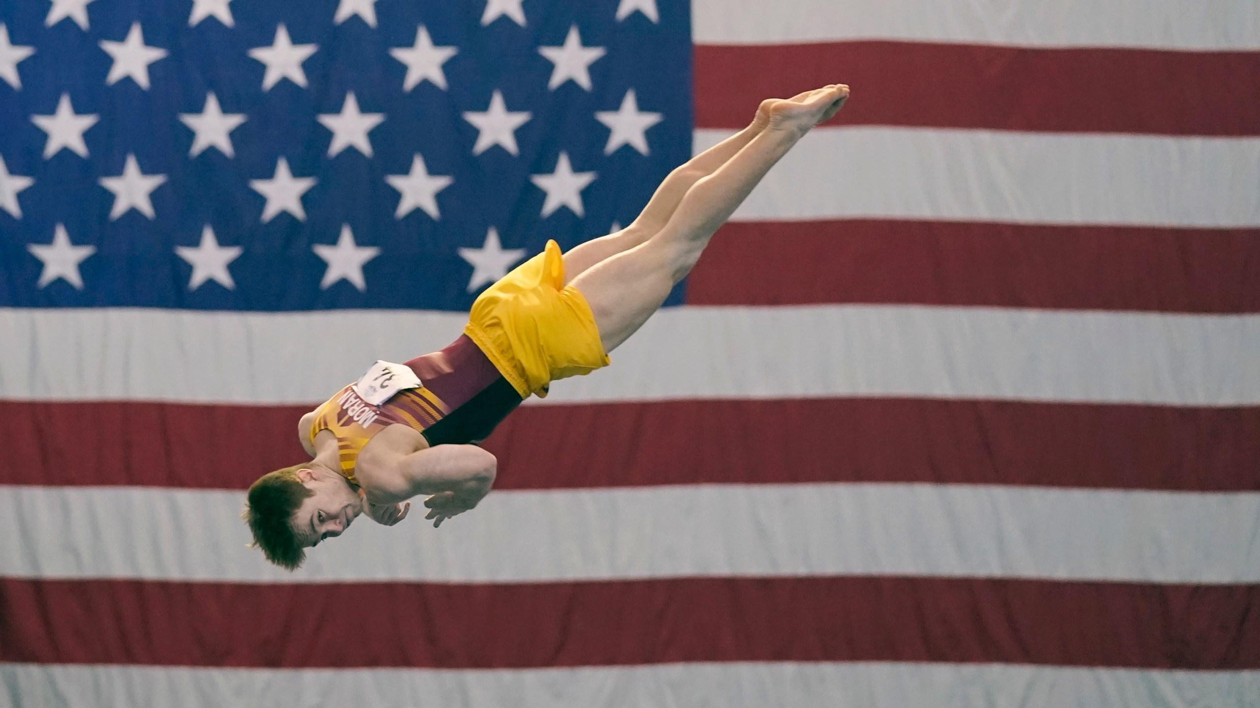 Image of men's gymnastics