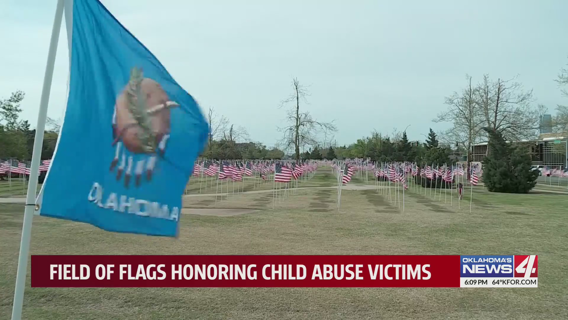 Each flag represents a child who dies of abuse or neglect in America every year.