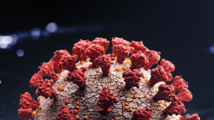 A 3-D rendering of the coronavirus (Getty Images).