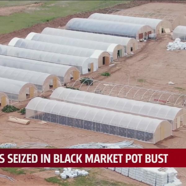 Oklahoma Bureau of Narcotics raids home, medical marijuana farm in Guthrie for selling product on black market