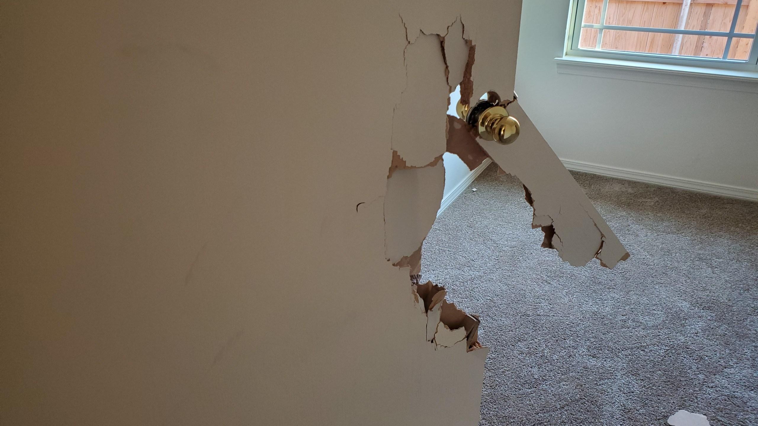 Vandals damage home