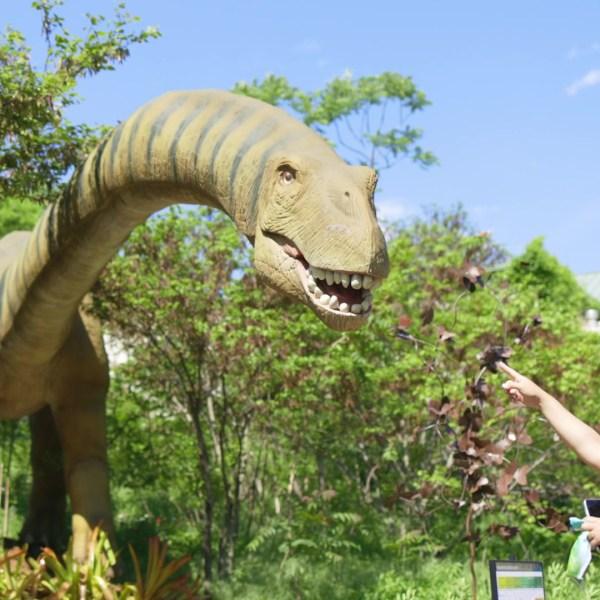 Oklahoma City Zoo Dino Safari
