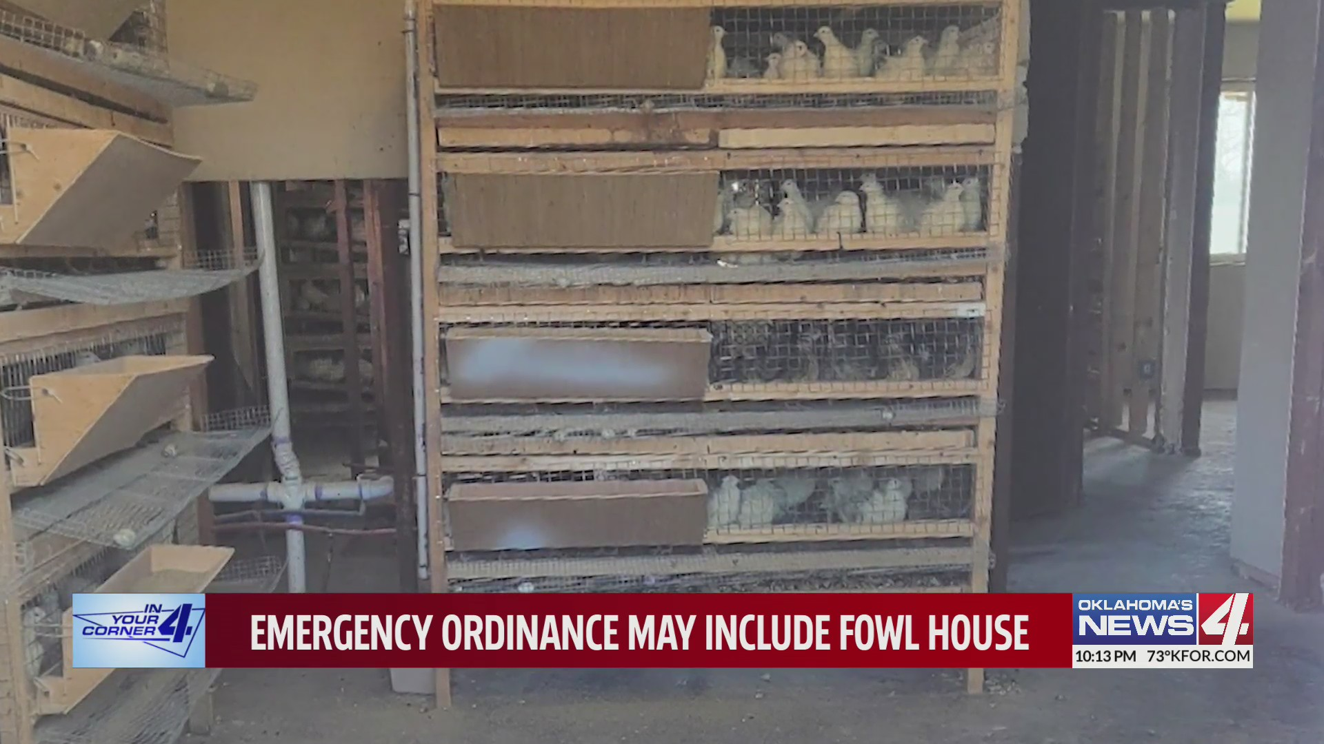 Japanese quail cages stacked in Oklahoma City residence