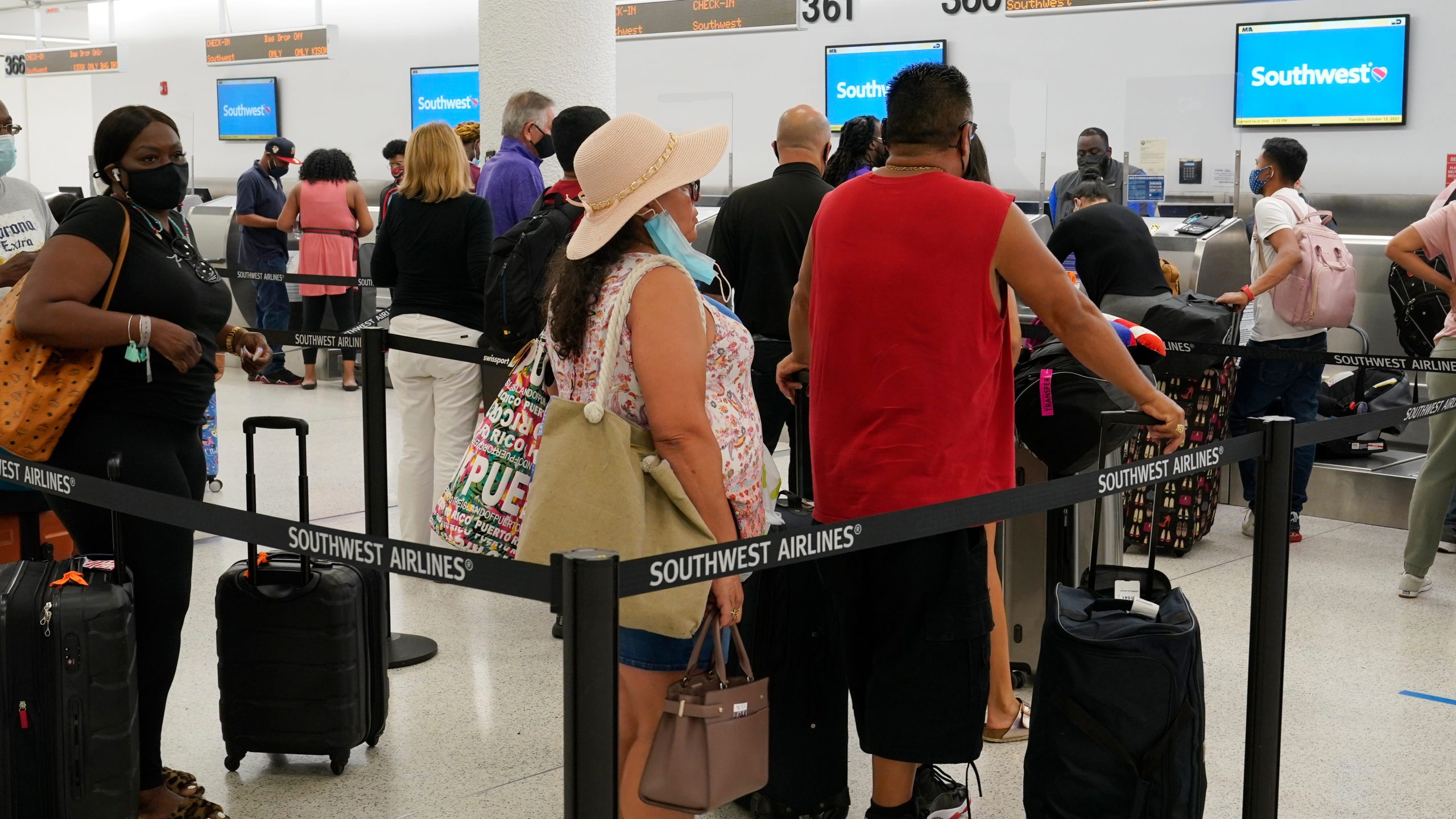 image of travelers in line at airport